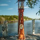 On The River in Everglades City by John  Kapusta