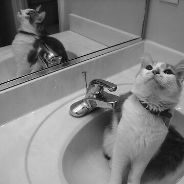 Bath time! by kuaile