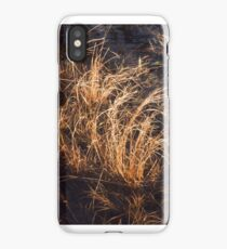 Nova Scotia Grasses iPhone Case/Skin