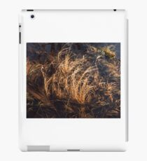 Nova Scotia Grasses iPad Case/Skin
