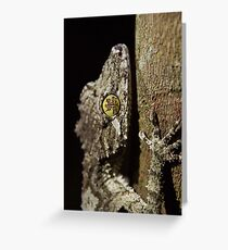 Gecko Life... Greeting Card