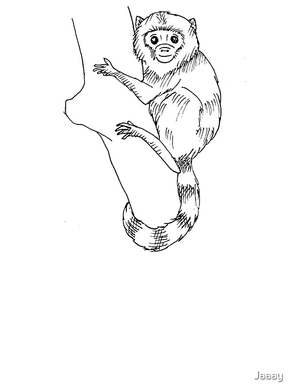 easy cartoon monkey
