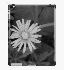Dandelion in grey scale iPad Case/Skin
