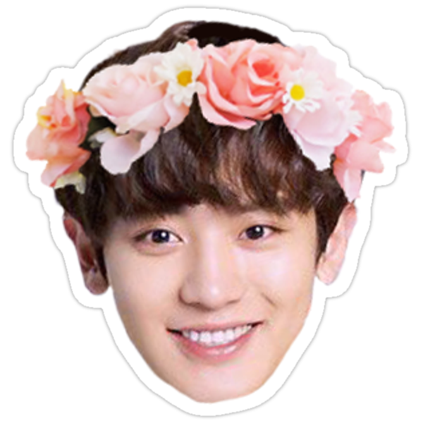 Quot Exo Chanyeol Quot Stickers By Jellycactus Redbubble