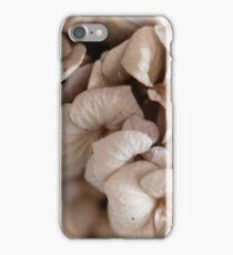 Macro photo of bouquet of dry flowers. iPhone Case/Skin