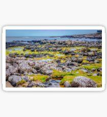 Ireland 'Rocks' - Giants Causeway, Northern Ireland Sticker