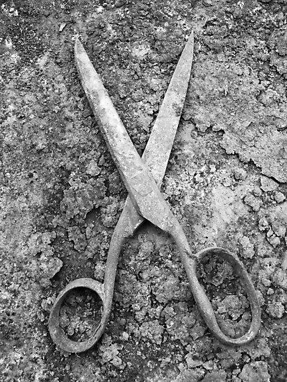scissors by Jean-François Dupuis
