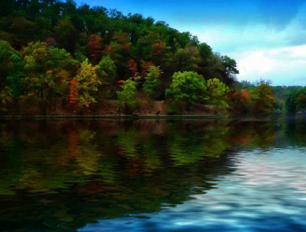A Kentucky's Fall by brandie