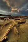 Storming the Cape  by Robert Mullner