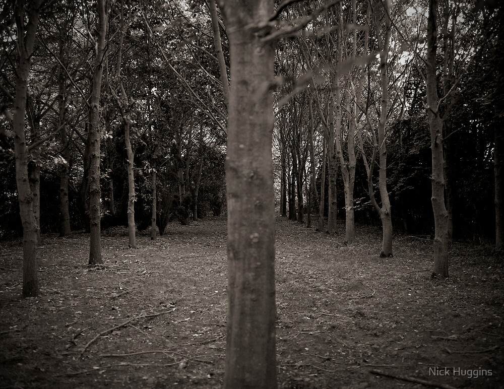 Menacing Wood by Nick Huggins