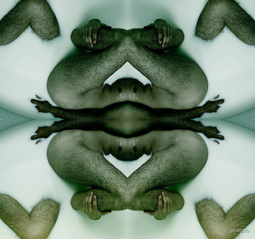AMPHIBIAN by gerecho