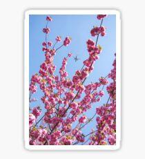 Cherry Blossoms - Vertical Sticker