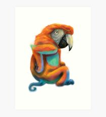 Parrot/Monkey mash-up Art Print
