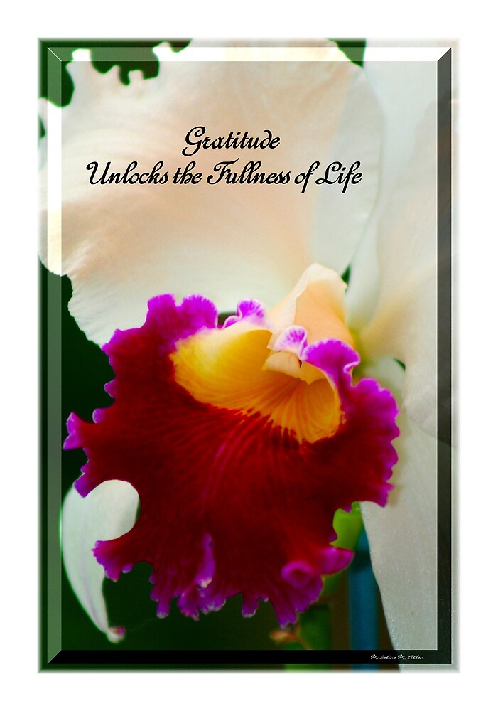 Gratitude Unlocks The Fullness Of Life by Madeline M  Allen