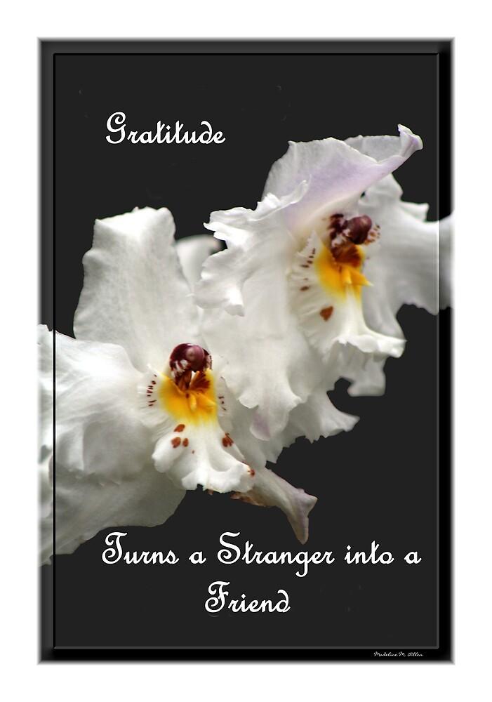 Gratitude Turns A Stranger Into A Friend by Madeline M  Allen