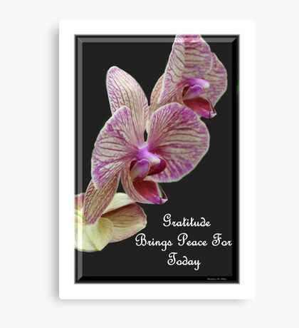 Gratitude Brings Peace For Today Canvas Print