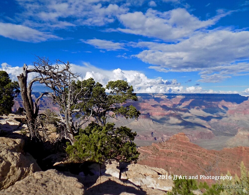 Grand Canyon and Tree by jezebel521