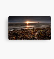 Sunrise at Ballycotton Co Cork, Ireland Canvas Print