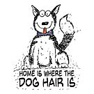 Home is Where the Dog Hair Is by jitterfly
