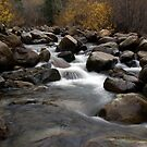 Carson River 2 by Jill Doyle