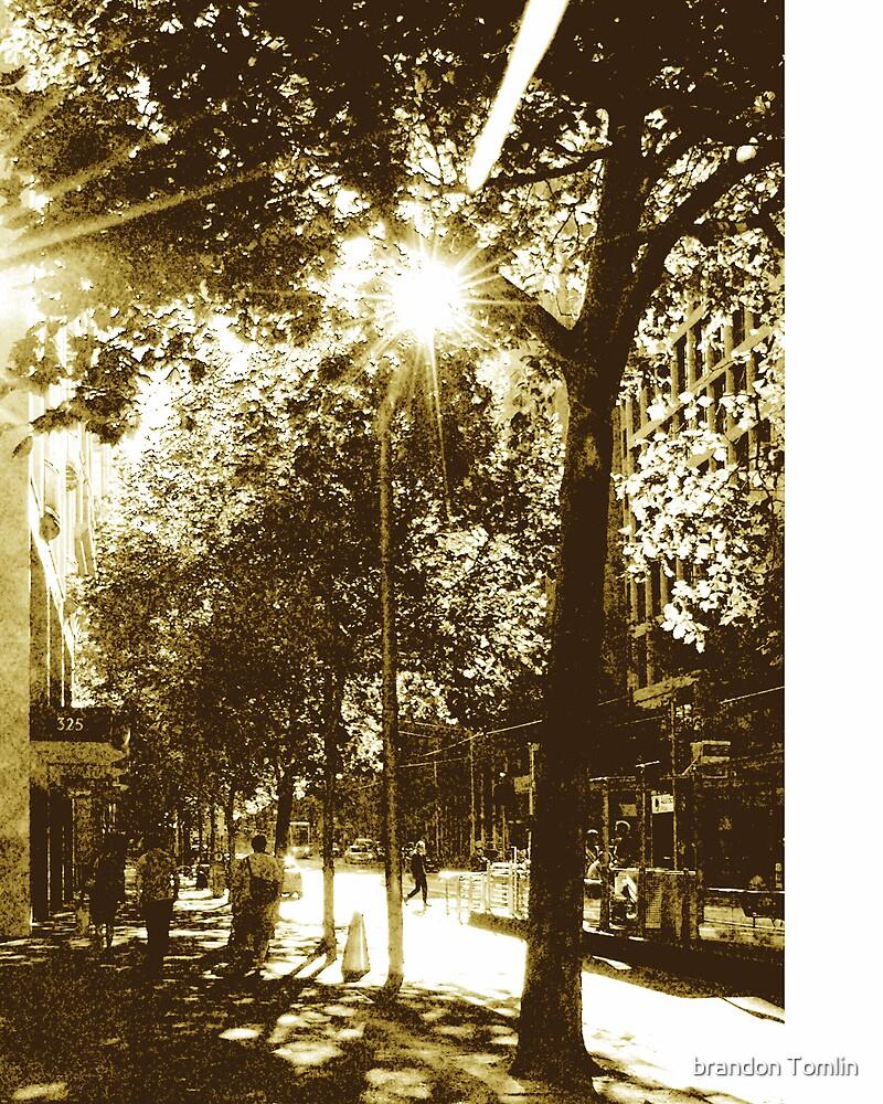 five oclck collins street $29. 00aus  by brandon Tomlin