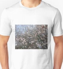 Hyde Park Cherry Blossoms  T-Shirt