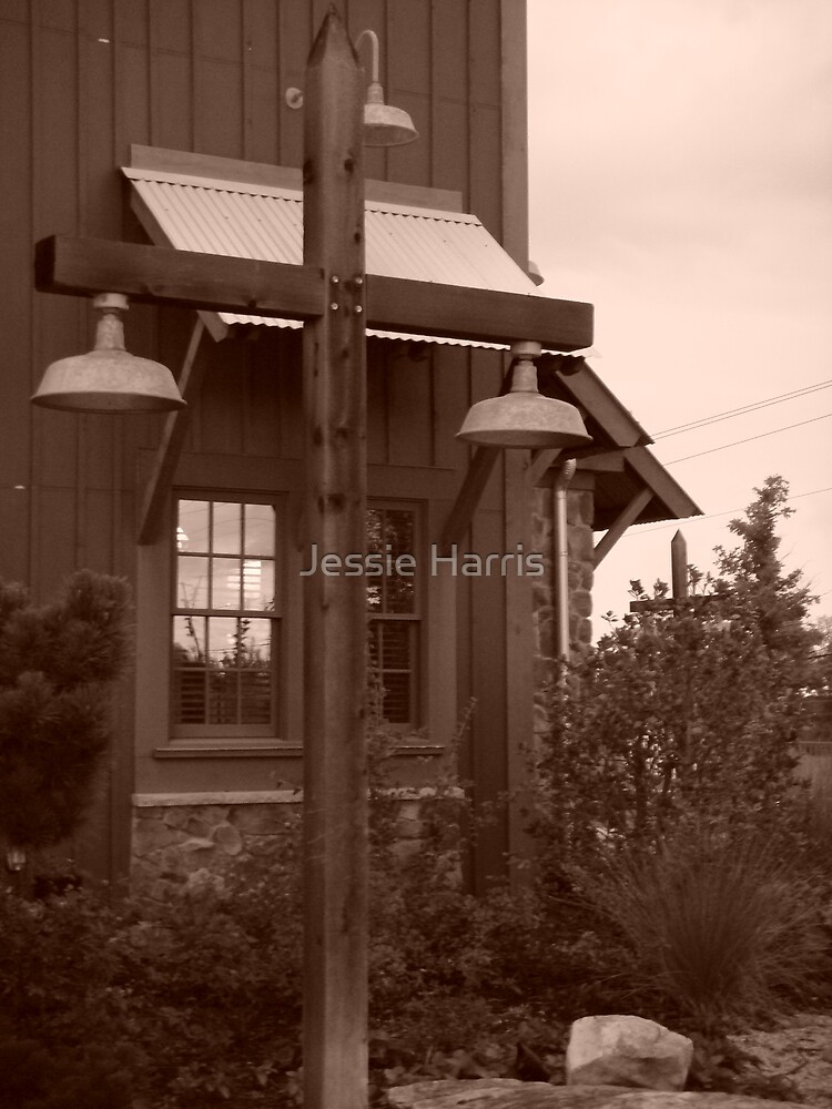 Lamp Post by Jessie Harris