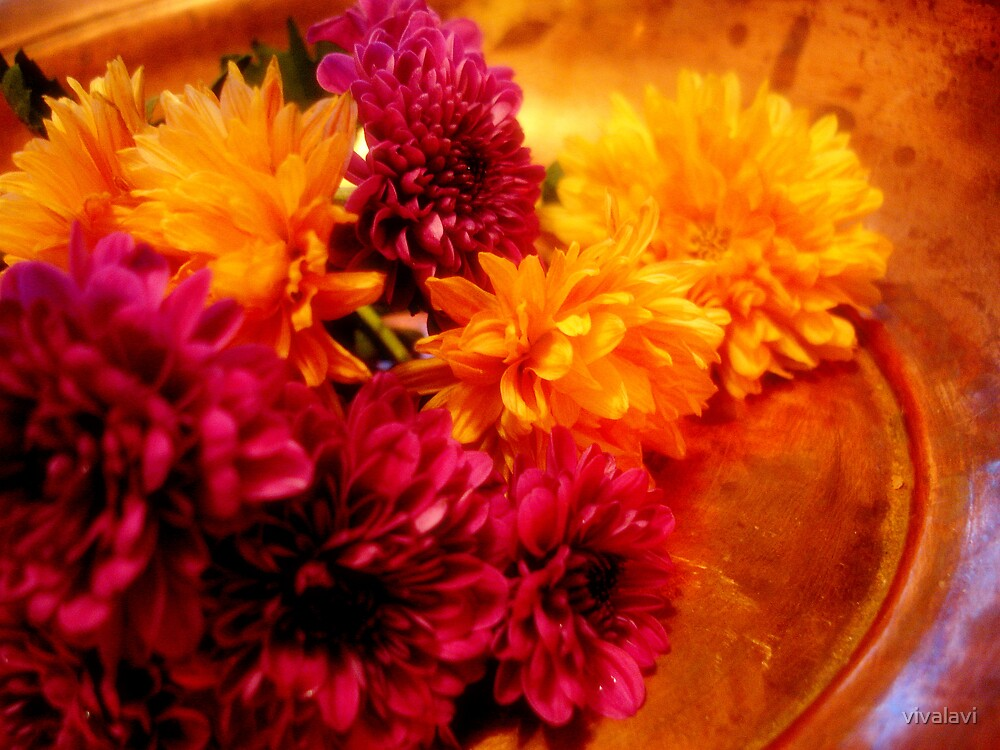 Flowers in Copper by vivalavi