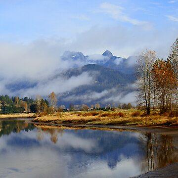 A River View by MaluC