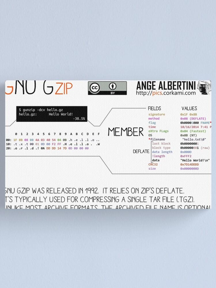 Alternate view of .GZ: GZIP Canvas Print