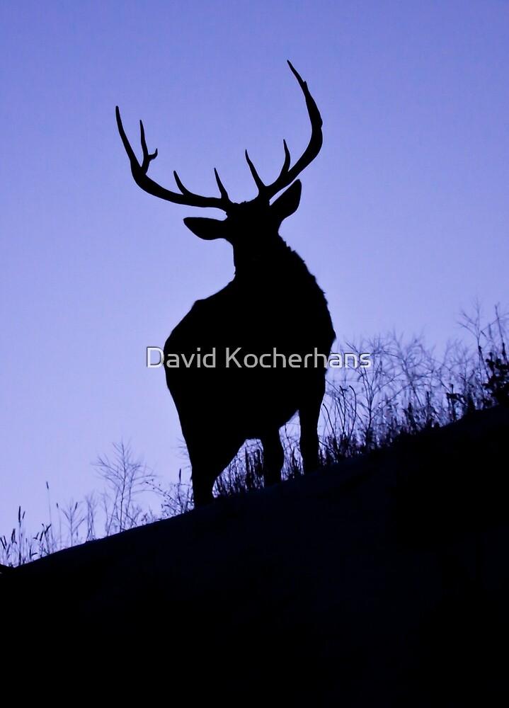 Elk On The Ridge by David Kocherhans