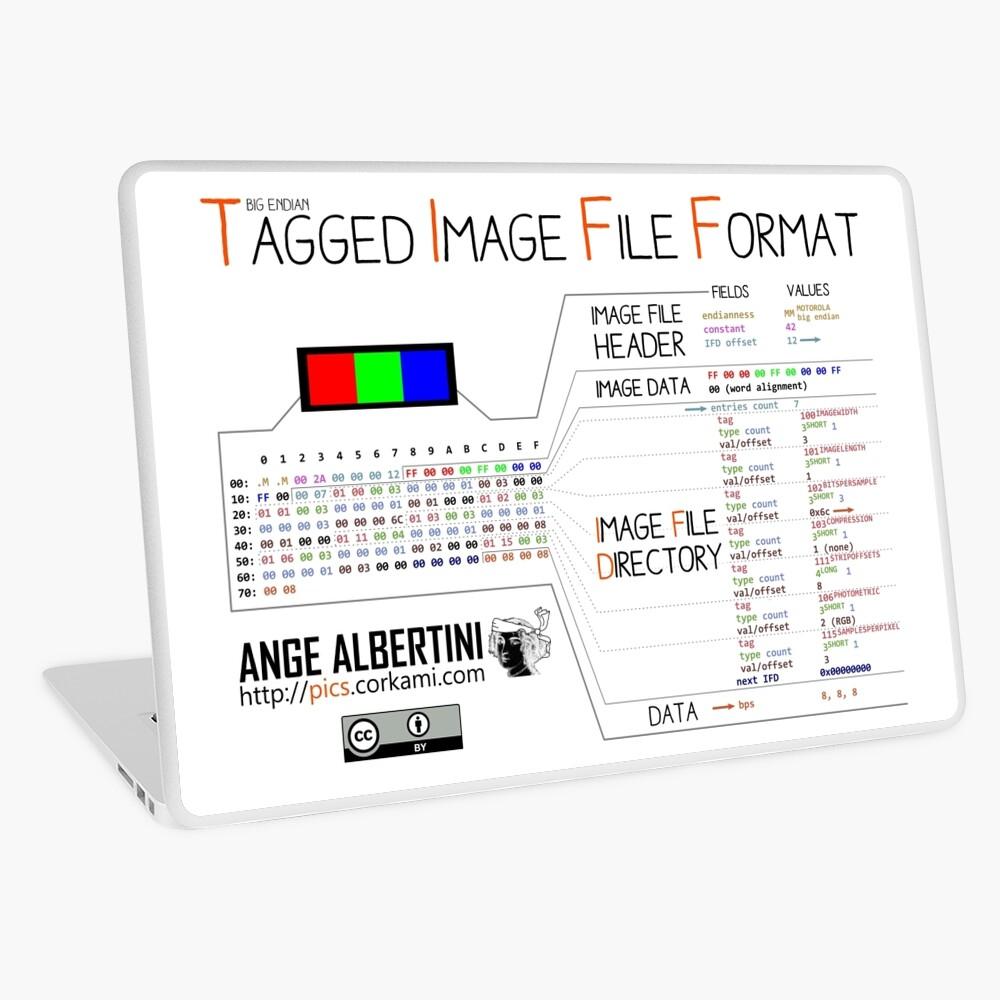 .TIFF : Tagged Image File Format (big endian) Laptop Skin
