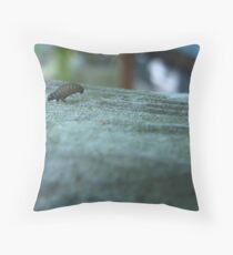 What's that bug ??? (2) Throw Pillow