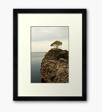 Credence Clear Water Survival Framed Print