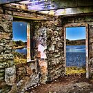 Room to View by Dave Harnetty