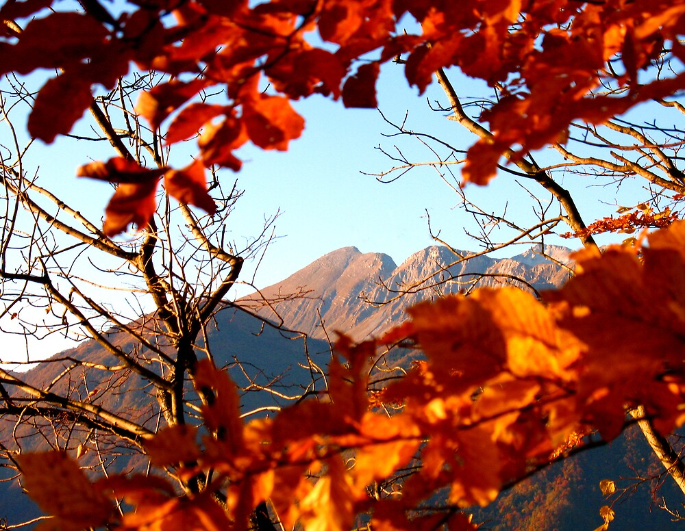 Autumn View On Krn by Rok Cuder