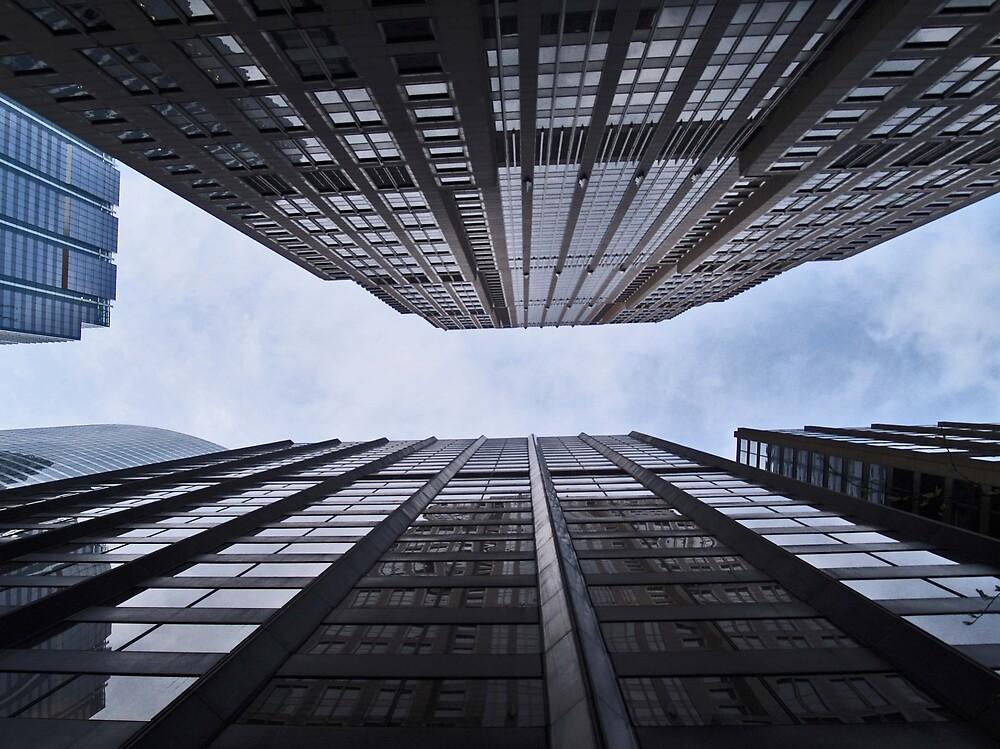 Look Up! by Daniela Reynoso Orozco