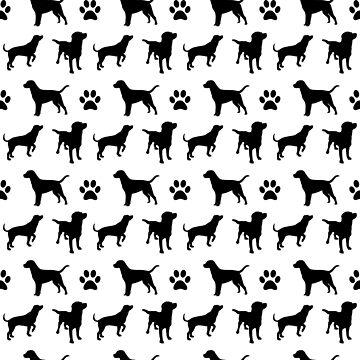 Labrador von seeleybooth