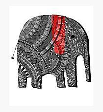 BestSelling Graphic Tsirt Decorated Elephant Photographic Print