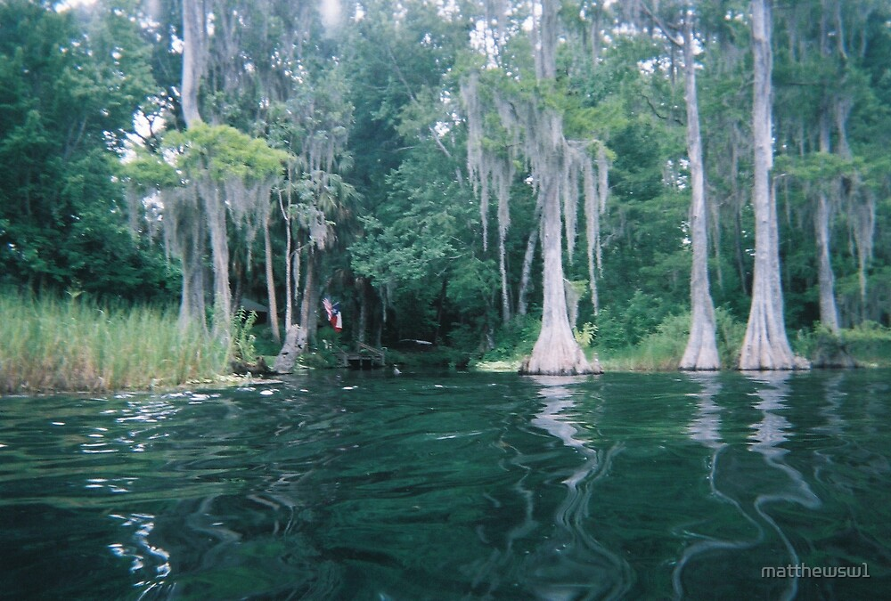Nice Day on The River in Dunnellon, FL by matthewsw1
