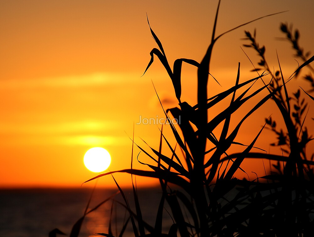 Silhouetted Sunset by Jonicool