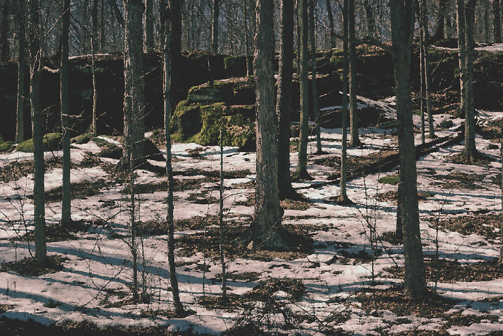Nelson's Ledges by Clarence R. Walker