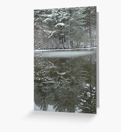 New Year's Day on Case Mountain Greeting Card