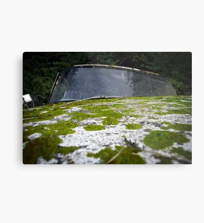 Nature Fights Back Metal Print