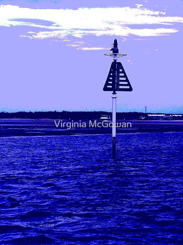 Boat Marker  by Virginia McGowan