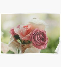 Pink and white flowers Poster