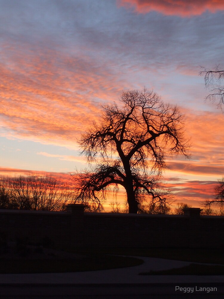 Lone Tree At Sunrise by Peggy Langan