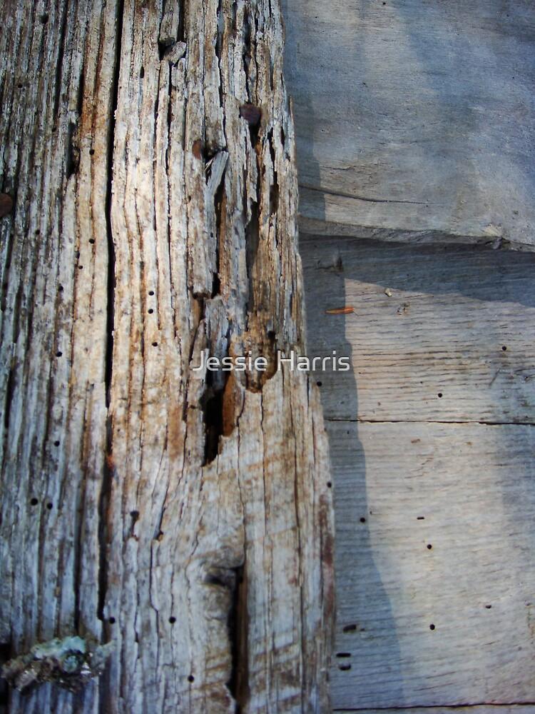 Wood by Jessie Harris