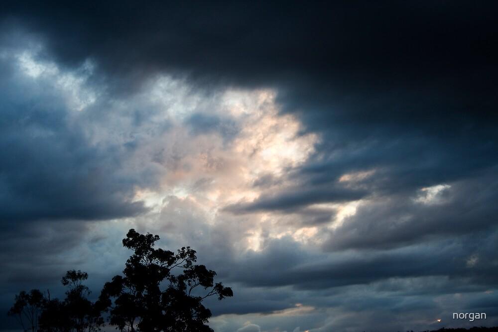 Wild Skies by norgan