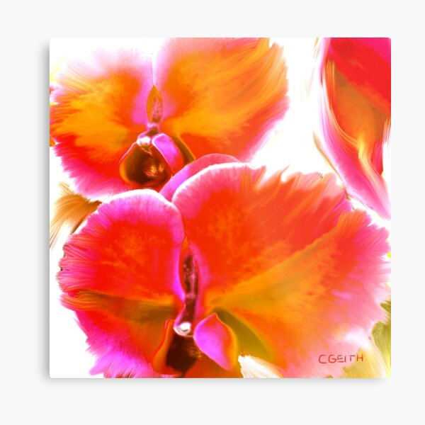Orchids Ablaze Metal Print